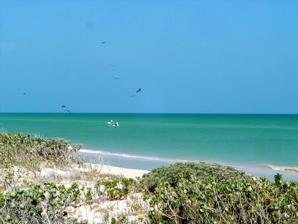 Sisal Beach