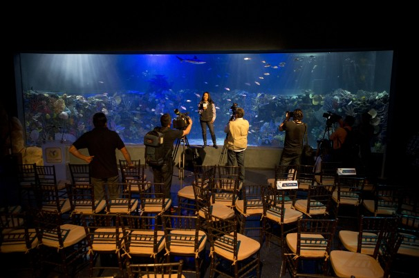 ... millionaire Carlos Slim opens Aquarium in Mexico - The Yucatan Times