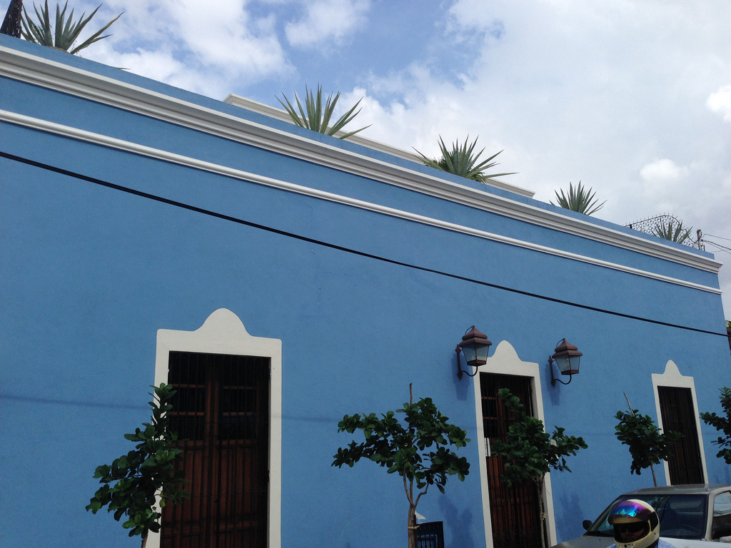 On Calle 53, a homeowner promotes the planting of more trees in the Centro. Photo Imagine Merida