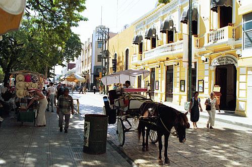 Calle 60 (Mérida, Yuc.)