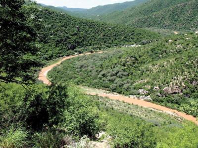 Bacanuchi River, Sonora