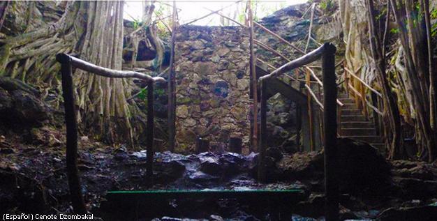 Dzombacal Cenote (Photo: Mayan Travel)
