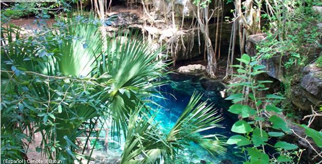 X'Batún Cenote (Photo: Mayan Travel)