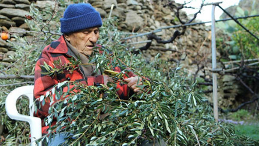 Stamatis Moraitis working on his vegetale garden in Greece (Photo: http://wausaunewsmatters.wordpress.com/)