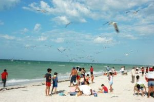 Progreso beach.  Photo by Tripadvisor