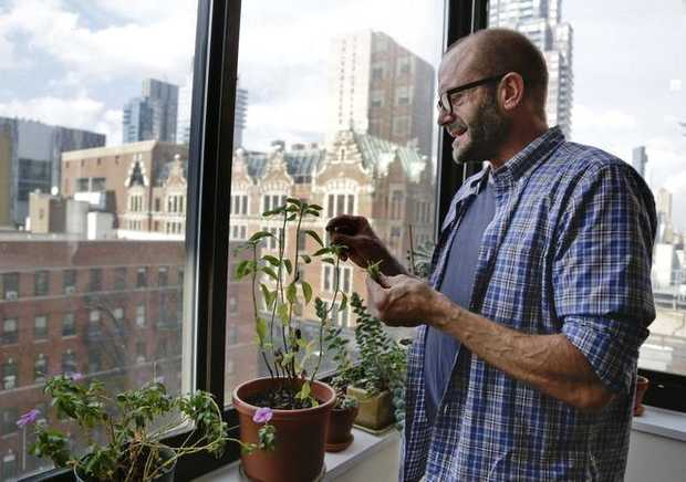 In this Oct. 16, 2014 photo, Jim Albaugh picks basil leaves to from a plant in his window while cooking dinner at the west side Manhattan apartment that he shares with two roommates in New York. JULIE JACOBSON — AP