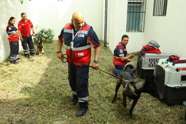 Cruz Rojos Perros