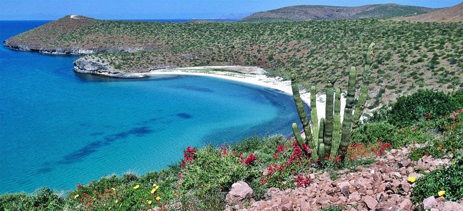Baja California Sur (Photo: Google)