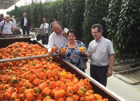 Dutch ambassador in Mexico Dolf Hogewoning, state secretary Sharon Dijksma and pepper grower Oscar Woltman of FreshMex. Photo by @LANMexico