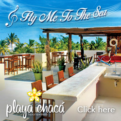 playa_chaca_lateral_banner249x249