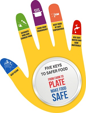 Who S Department Of Food Safety And Zoonoses