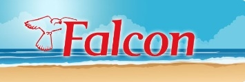 falcon-holidays-dublin-big-28480-0