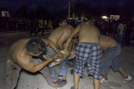 Barbaric behavior (Photo: Hugo Borges)