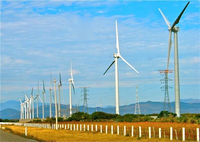 Wind farm in Tehuantepec, Oaxaca (Google)