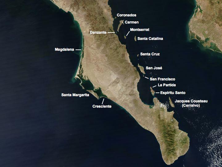 Islas del Pacífico of Baja California