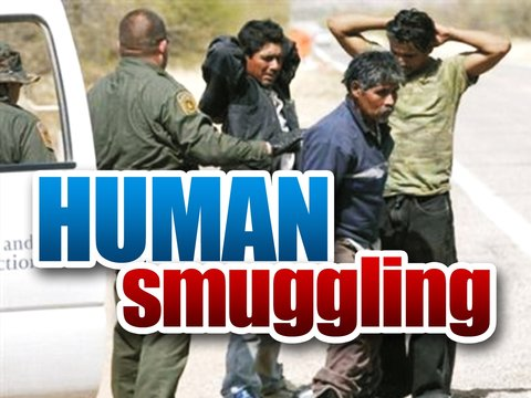 Human smuggling ring dismantled in South Texas (Photo: scrippsmedia.com)