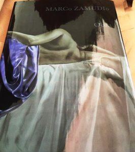 libro-de-pintura-del-artista-marco-zamudio-906601-MLM20357265190_072015-F