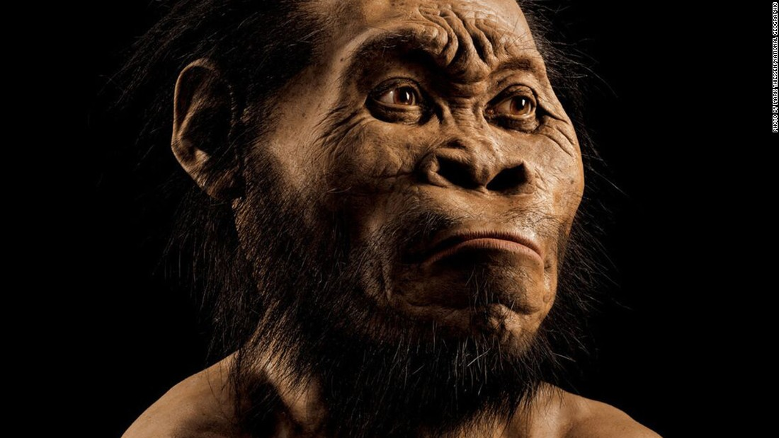 Homo Naledi (Photo: CNN)