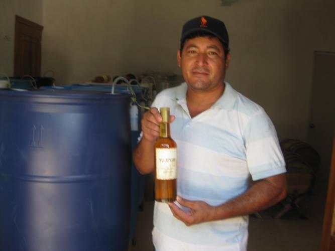 Agripino Rodríguez Morales (Photo: SIPSE)