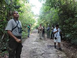 Photo: SIPSE Bird watchers on Cozumel