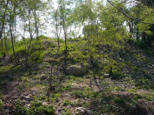 Anikabil vegetation covered pyramid at Ciudad Caucel Mérida (Photo: Panoramio)