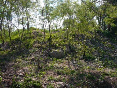 Anikabil vegetation covered pyramid at Ciudad Caucel Mérida (Photo: Panoramio)