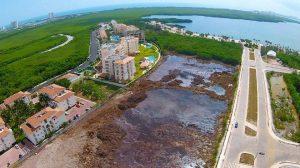 Aerial view of devastated mangrove area (Photo: Noticaribe)