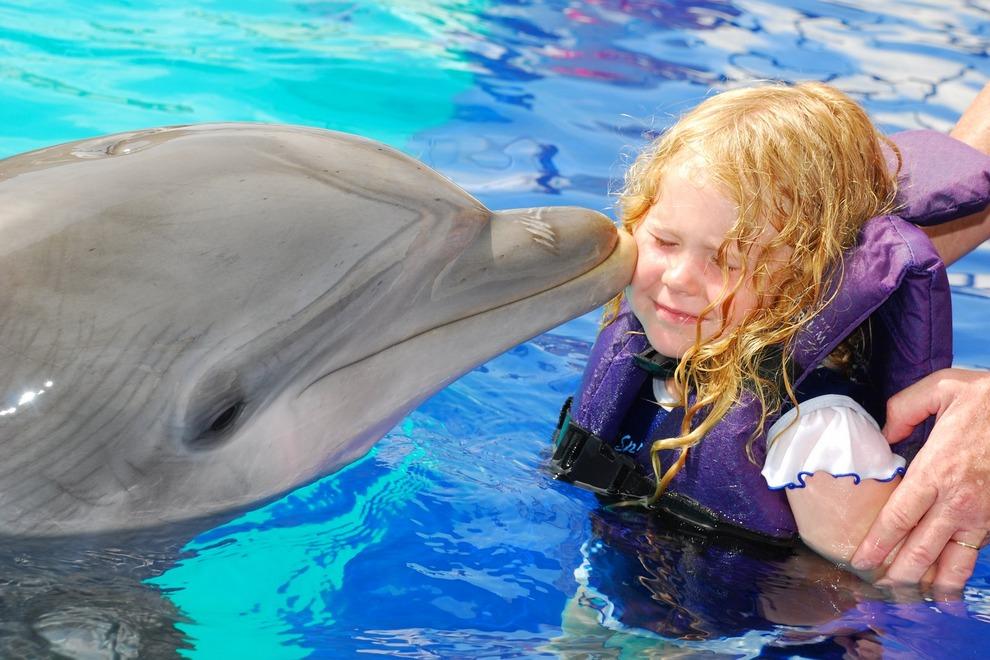 La Isla Interactive aquarium (Photo: USA Today)