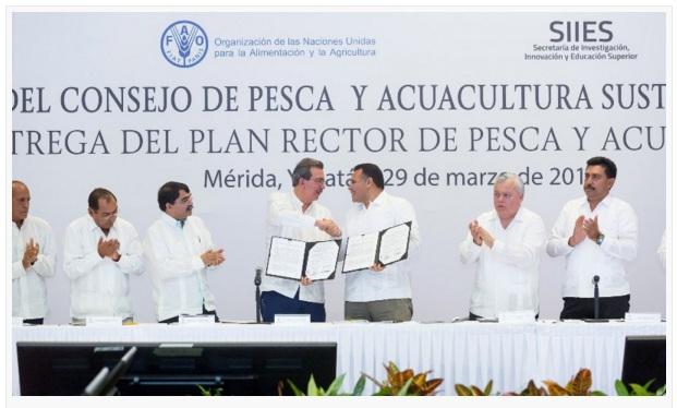 plan rector para pesca y acuacultura yucatan