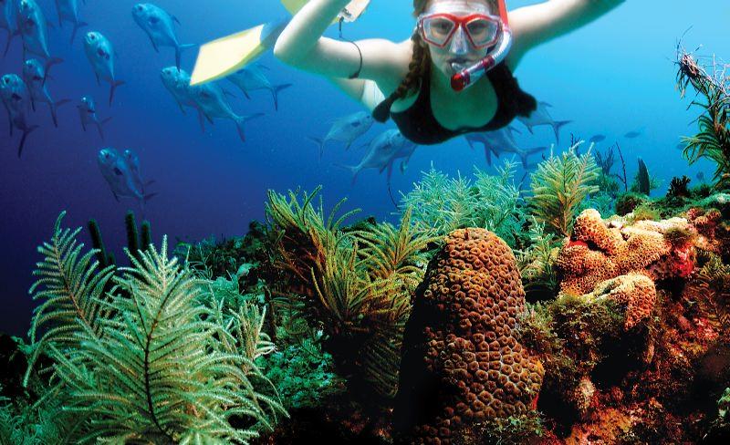 snorkel-isla-mujeres