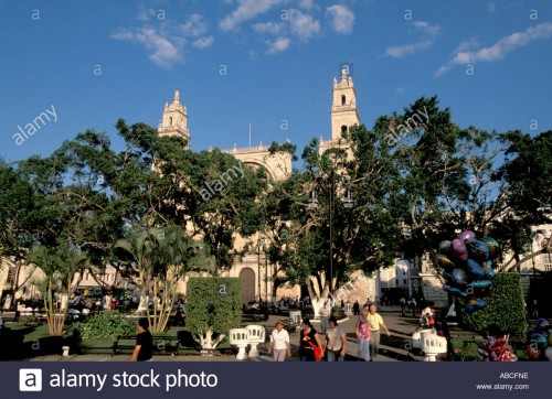 "500 trees will be offered for ""adoption"" in Merida's Plaza Grande on Sunday April 17. (PHOTO: alamy.com)"