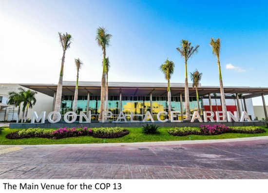 Cancun arena will be the main site for COP13, a UN environmental conference in December.