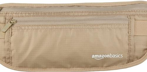Moneybelt (Amazon)