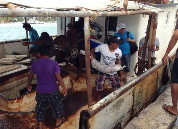 Fishermen offloading octopus. (Photo: fishbio.com)