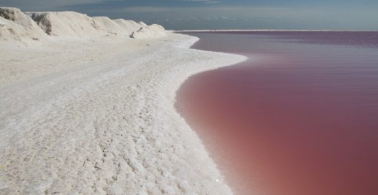 Salty pink waters at Las Coloradas near Rio Lagartos biosphere reserve. (PHOTO: gettyimages.com)