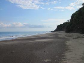 beach_at_lo_de_marcos__nayarit__looking_north