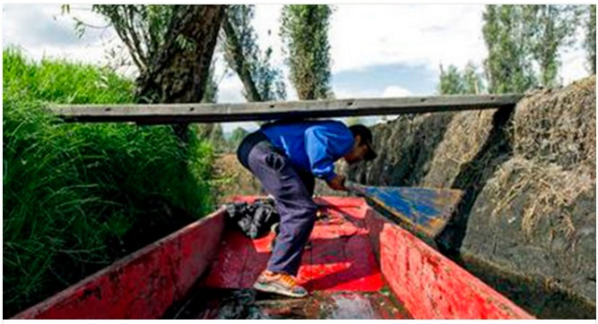 In this Aug. 19, 2016 photo, Edgar Serralde ducks below a wooden plank as he navigates through a Xochimilco canal, in Mexico City. Serralde, a rain harvester, uses the rain water he catches instead of relying on the water trucks that rumble through so many of Mexico City's working class neighborhoods. (AP Photo/Nick Wagner)