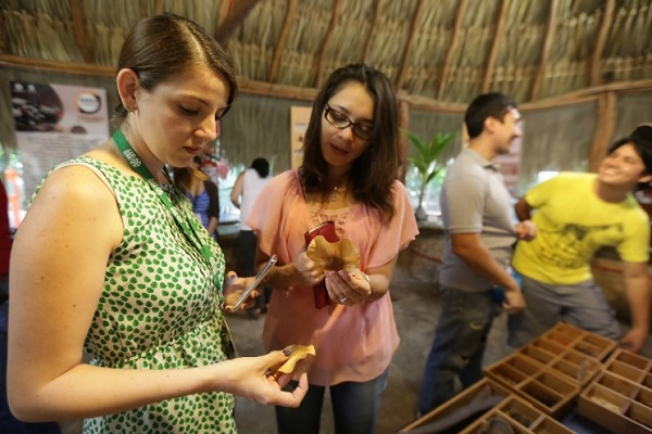 (Photo: Expreso Campeche)