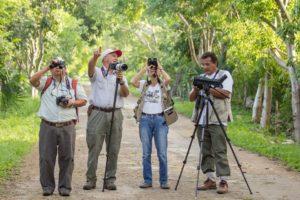 Bird watchers will gather at Calakmul, Campeche Oct. 21-23. (PHOTO: mexicodestinos.com)
