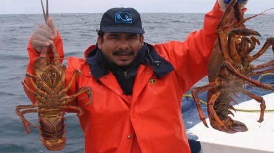 Yucatan fishermen aided in the development of lobster refuges. (PHOTO: yucatanalamano.com)