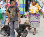 A boy carries turkeys in Oaxaca state near the archaeological discovery site. (PHOTO:  Credit: Linda Nicholas, The Field Museum)