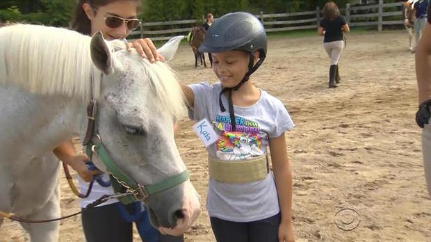horsehealing