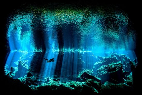 Underwater Photographer of the Year 2017 category winning shot from Yucatan cenote. (PHOTO: Nick Blake)