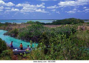 Sian Ka'an Biosphere Reserve. (PHOTO: Alamy Stock)