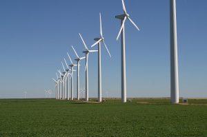 A Yucatan wind farm. (PHOTO: metering.com)