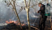 Drought-like conditions increase chances of forest fires. (PHOTO: sipse.com)
