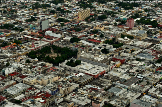 Aerial view of Merida's Centro shows lack of trees and green spaces. (PHOTO: LightHawk)