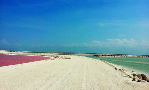 Las Coloradas, Pink Lagoon (Photo: Google)