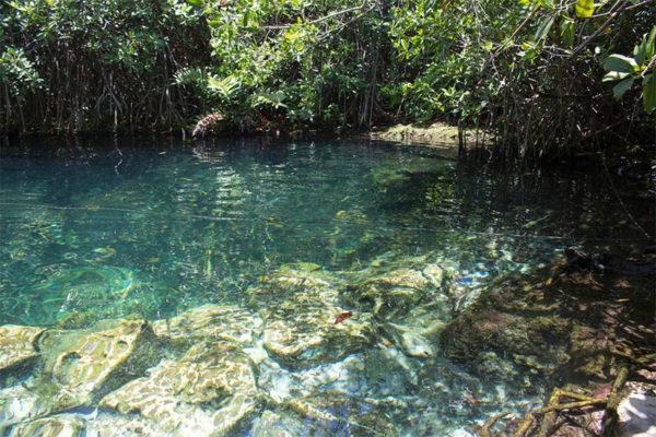 Cenote at Xcacel (Photo: Google)