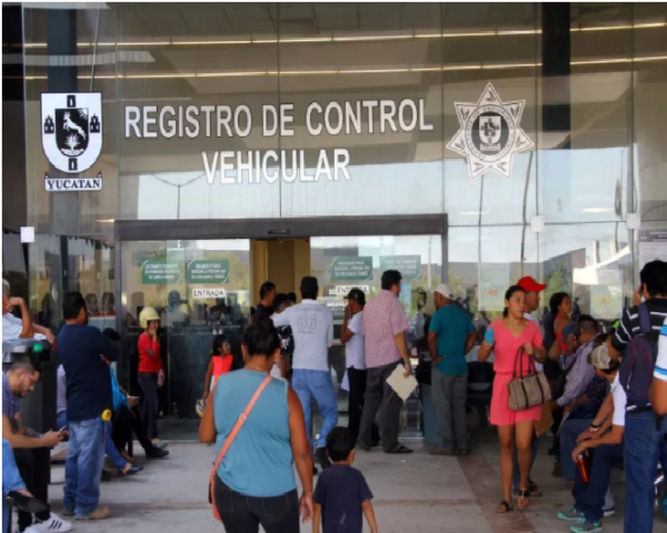 How much does it cost to get a driver's license in Mérida ...